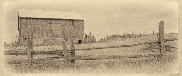© N. Shields Our Rural Past #1 1408